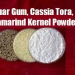 Guar Gum Powder, Cassia Tora Powder, Tamarind Kernel Powder, Psylium Powder Explained!