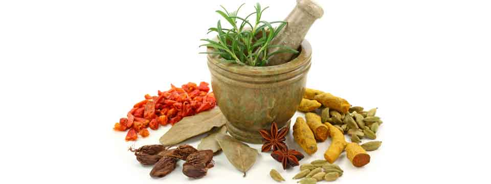 Why Ayurveda Became more Preferred Over Others