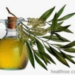 All About Tea Tree Oil Acne and Skin Treatment