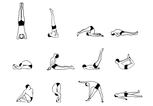 12 Basic Yoga Asanas