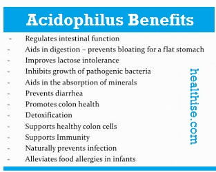 Acidophilus - benefits of health supplements