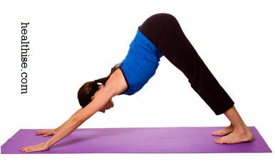 Downward-facing Dog Pose yoga exercise