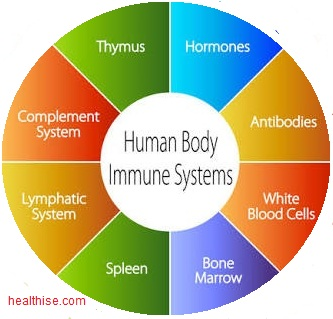 Improve Resistance Power (Immune) - Ayurveda Natural Home Remedies