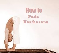 Pada Hasthasana How to do Standing Forward Bend Yoga steps