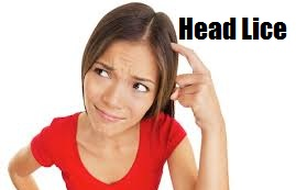 head lice - Ayurveda Natural Home Remedies