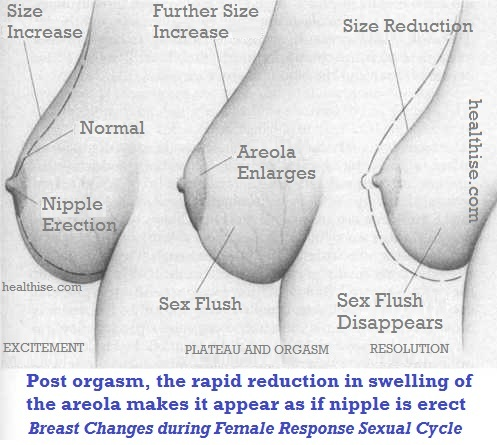 nipple breast stimulation - erect nipples sex flush and aerola reduction to increase in size