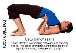 yoga backbend poses - setu bandhasana yoga position