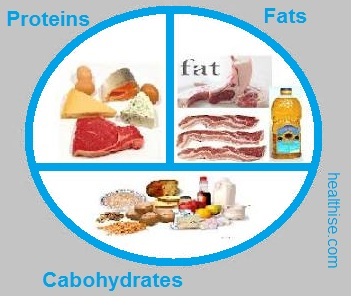 Food categories carbs proteins fats