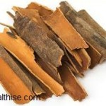 Healing Properties of Cinnamon
