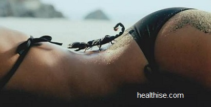 Scorpion Bites (Scorpion Stings) Symptoms and Ayurvedic Mint Natural Home Remedy