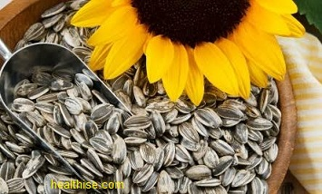 Sunflower seeds contains the largest quantities of selenium