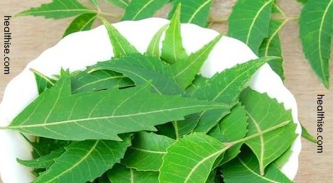 healthise neem leaves causes and treatment of eczema