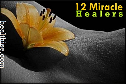 Bach flower Essences The 12 Miracle Healers