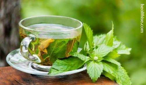 green tea cure male infertility increase sperm count