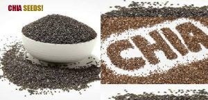 chia seeds man health